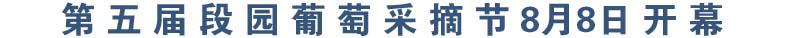 第五届段园葡萄采摘节8月8日开幕