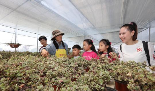 学花木养护过绿色生活