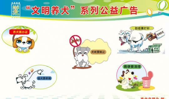 杜集区文明养狗宣传