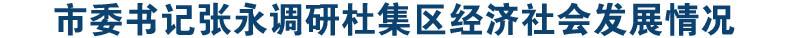 市委书记张永调研杜集区经济社会发展情况