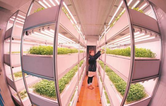新型农业装备引领科技种植